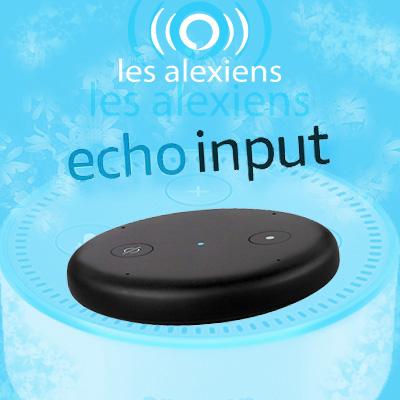 Présentation, test et caractéristiques de Echo Input