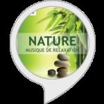 Nature zen : sons relaxants pour dormir avec Alexa Echo