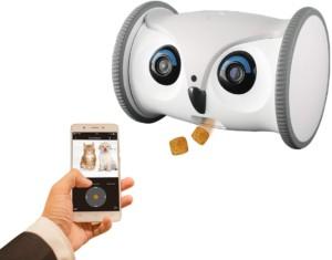 robot jouet pour chien avec caméra intégré