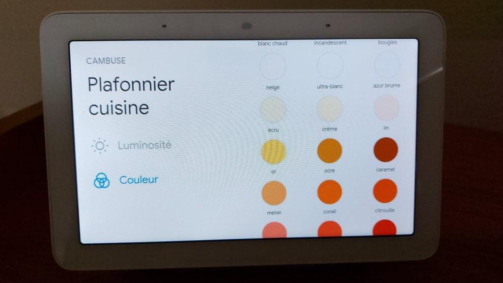 Plafonnier LSC sur Google Nest Hub