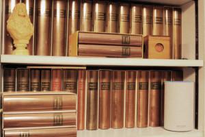 Amazon Alexa conseille désormais des livres à livre