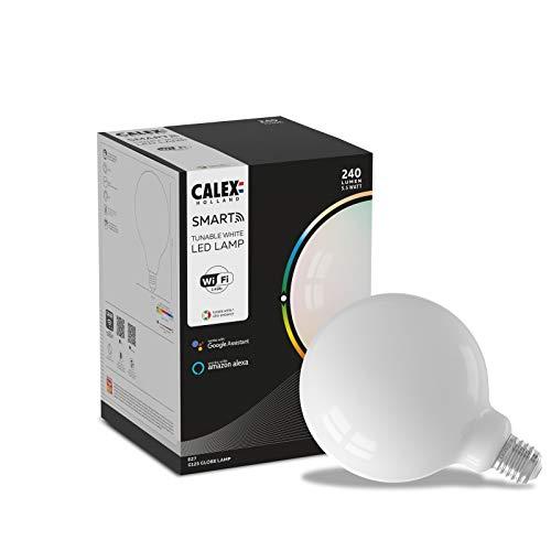 Calex Smart Globe Lamp G125 culot E27