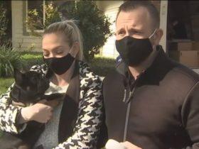 Alexa Guard permet à un couple de sauver son chien d'un incendie