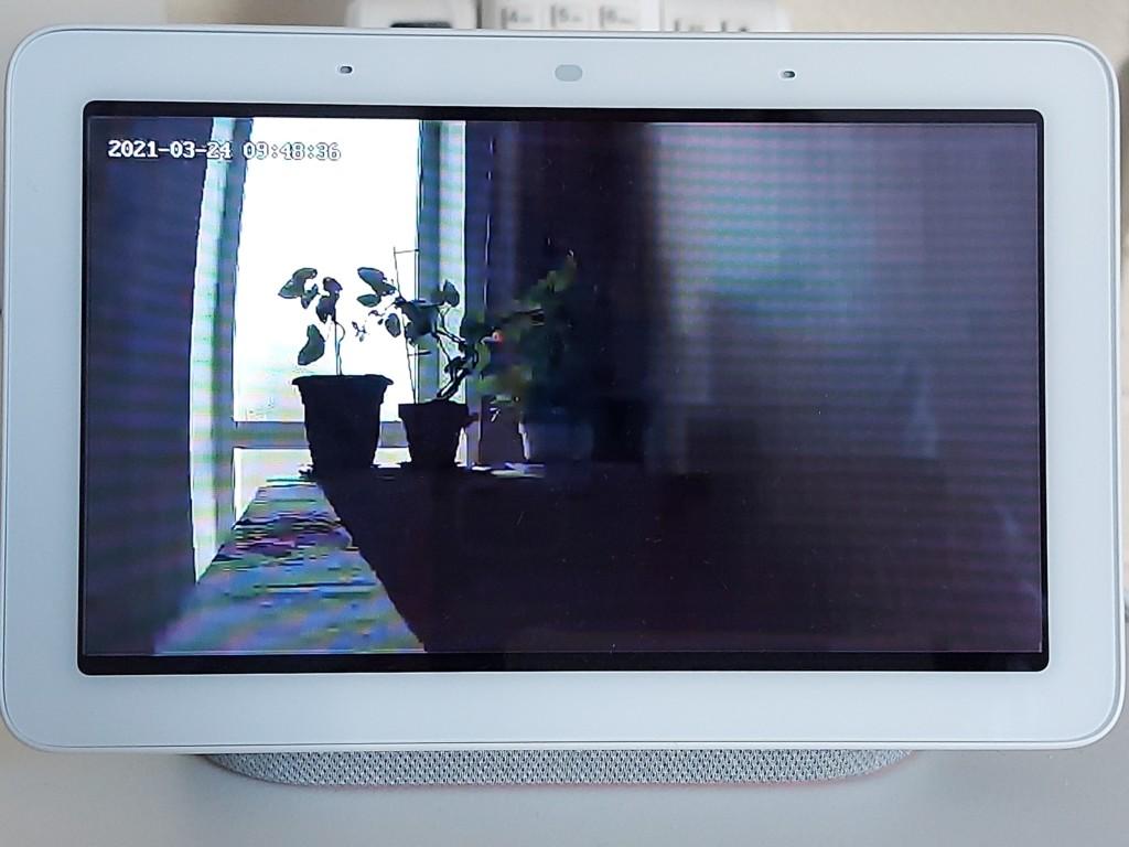 Image de a Caméra TECKIn TC10 sur un appareil Google Nest Hub