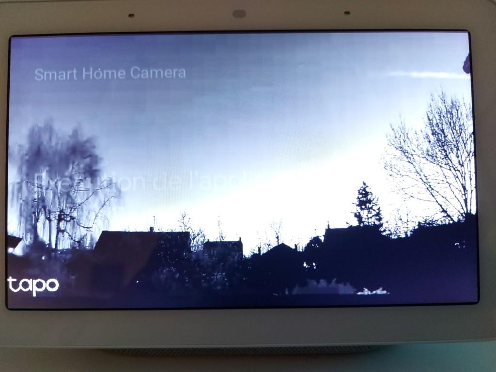 Nest Hub affichage de nuit de la caméra connectée Tapo C310
